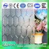 verre modelé en verre en verre givré d'espace libre de 3mm-6mm avec du CE et l'ISO9001