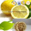 Tranche de thé normale et de poids de perte et citron sec de Cutted