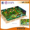 Vasiaの高品質はからかうプラスチック屋内運動場装置(VS1-160425-308A-32)を