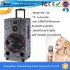 Kies 12-duim de PA Speakers van Powered DJ met LED Flashing Light uit
