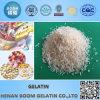 Gelatina popolare dell'idrolizzato granulare