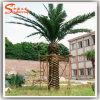 Alberi esterni di plastica della pianta di giardino della palma della pianta artificiale