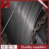 Fil d'acier recuit par approvisionnement Swch45k de Longly pour faire les dispositifs de fixation de haute résistance