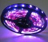 분홍색 5050 LED 지구 빛 (EL-NS5050PI30)
