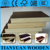 18mm Black Film Faced Plywood/ Phenolic Board