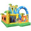 膨脹可能な楽しみの遊園地T5-144