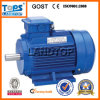 AC снабжения жилищем чугуна LTP 3 мотора инструмента участка электрических