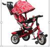 Cores diferentes do triciclo popular dos miúdos