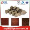 Arix Diamond Segment para Reinforced Concrete