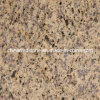 Tigre Skin Yellow Granite para Floor Tile o Countertop