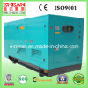 20kVA-100kVA Cummins Engine Power Supply Soundproof Diesel Generator