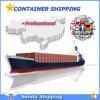 Serviço de Envio de Container Seco para Global
