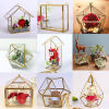 2017 de Nieuwe Vaas van de Bloem van het Glas van de Prijs van de Fabriek van het Decor van het Huwelijk Chinese Duidelijke/de Duidelijke Container die van de Installatie Geometrisch Glas Terrarium hangen