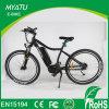 bici de montaña 29er con el motor 36V 250W o 36V 350W del eje