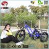 tricycle inclus électrique de moteur de gros pneu de bâti d'alliage d'aluminium de 48V 500W