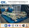 CNG19によってスキッド取付けられるLcng CNGの液化天然ガスの組合せの給油所