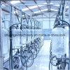 Salon de traite d'exploitation laitière avec le mètre en verre 2X16 de lait