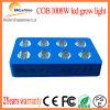 高品質LEDは倍力プラントおよびハーブのために軽く育つ