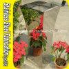 屋外のステンレス鋼の植木鉢の庭プランター