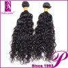 短い巻き毛のバージンの毛はRemyのインドの毛を漂白できる