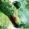 [100بولستر] طاووس [بيغمنت&ديسبرس] يطبع بناء لأنّ [بدّينغ] مجموعة