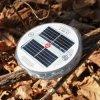 Lâmpada solar do diodo emissor de luz da lanterna solar do diodo emissor de luz na versão mais barata