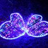Luzes ao ar livre da borboleta do diodo emissor de luz da decoração 10 do Natal para o feriado
