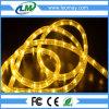 Do fio inteiro da venda 2 da fábrica iluminação horizontal da corda do diodo emissor de luz - azul