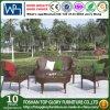 Sofá ao ar livre do Rattan do PE do jardim da sala de visitas com tabela de chá (TG-258)