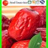 Fecha roja secada, azufaifa china, mercancías secas, alimento sano