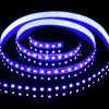 5060+2835 luz flexível do diodo emissor de luz da tira 96 LEDs/M de RGB+W