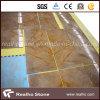 Possedere le mattonelle di marmo della cava Yellow//Gold
