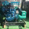 Sale를 위한 64kw CCS Ricardo Series Marine Generator