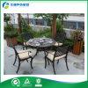 Muebles malasios de la fundición de aluminio de los muebles de la alta calidad de la larga vida (FY-047ZX)