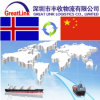 Frete de mar de FCL/LCL de Shanghai/Shenzhen/Xiamen/Tianjin China a Islândia