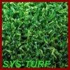 Relvado bicolor da grama do fio para o verde de colocação do golfe