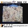 De gele Plakken van het Graniet van Brazilië van het Graniet Nieuwe Venetiaanse Gouden die aan Grootte worden gesneden