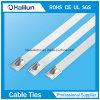 Bola caliente de los Ss de la venta 304 que bloquea las ataduras de cables para resistente