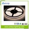 Tira flexível livre do diodo emissor de luz da amostra SMD2835 DC12V 60LED/M