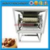 Machine de traitement des noix de macadamia à prix usine
