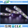Tira púrpura ULTRAVIOLETA flexible de la luz 2835 SMD 365nm LED