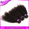 o Weave brasileiro barato Curly brasileiro do cabelo do Virgin do cabelo 4PCS do Virgin 7A empacota o cabelo Curly Kinky brasileiro do Virgin de Ali