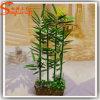 Pflanzt Guangzhou-künstlicher Großhandelsbambus 2015 Baum