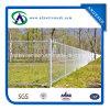 Link Chain Fence con Spinato-collegare