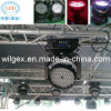 Luz principal móvil estupenda del brillo DMX 108* 3W RGBW