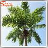装飾の人工的な屋外のココナッツはヤシの木実を結ぶ