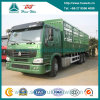 Sinotruk HOWO 6X4 Felsen-Body Lorry 371HP