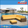 Aluminum Frame를 가진 Rattan Outdoor Sofas Furniture의 최고 Sale