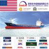 Serviço de transporte do frete de mar de LCL/FCL de Guangzhou, Shenzhen, Shanghai, Ningbo, Xiamen, Qingdao, China a relaxado, EUA