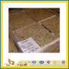 Tiger Polished Skin Yellow Granite Tile per Wall/Flooring (YQC)